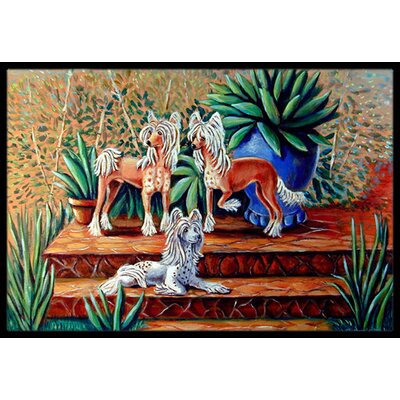 Chinese Crested Doormat Mat Size: Rectangle 16 x 2 3