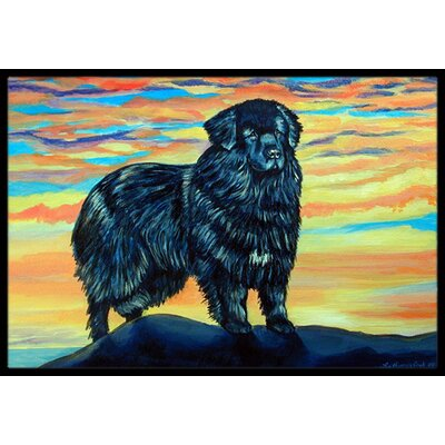Newfoundland Doormat Mat Size: Rectangle 2 x 3