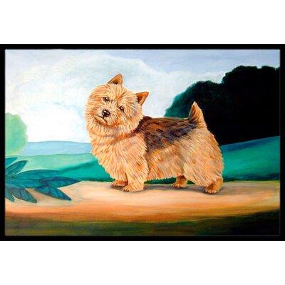 Norwich Terrier Doormat Rug Size: 16 x 2 3