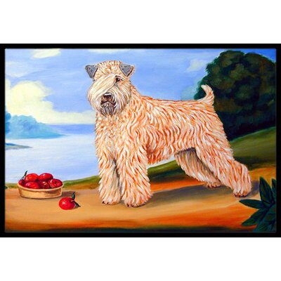 Wheaten Terrier Soft Coated Doormat Rug Size: Rectangle 16 x 2 3