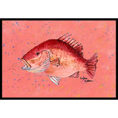 Strawberry Snapper Doormat Rug Size: 2 x 3
