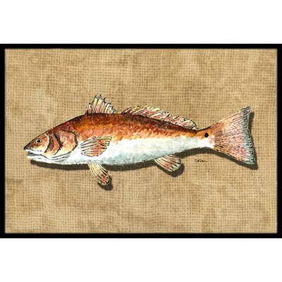 Fish Doormat Rug Size: Rectangle 2 x 3