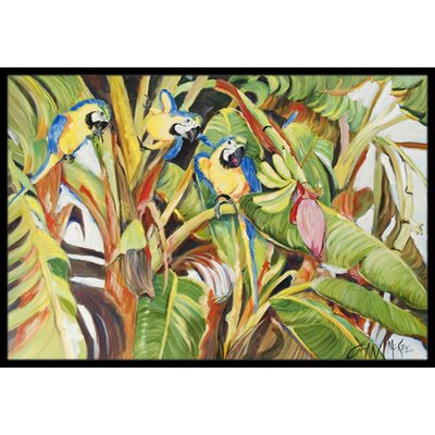 Three Parrots Doormat Rug Size: Rectangle 2 x 3