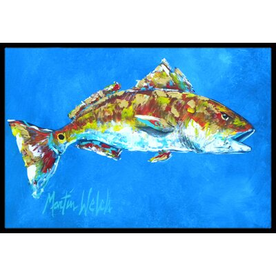 Fish - Fish Seafood Two Doormat Rug Size: Rectangle 16 x 2 3