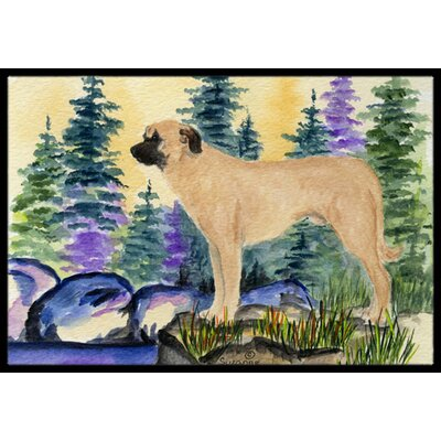 Anatolian Shepherd Doormat Mat Size: Rectangle 2 x 3