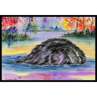 Newfoundland Doormat Rug Size: Rectangle 2 x 3
