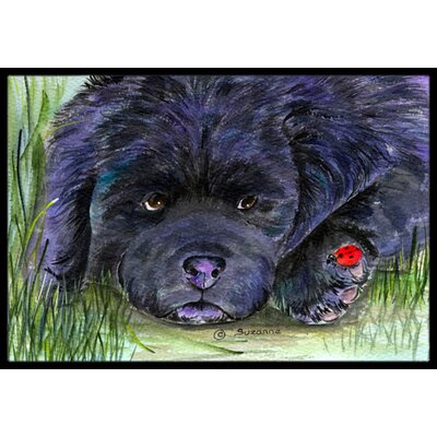 Newfoundland Doormat Mat Size: Rectangle 16 x 2 3