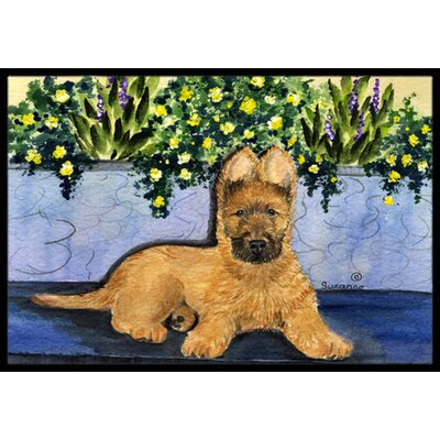 Briard Doormat Mat Size: Rectangle 16 x 2 3