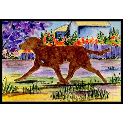 Chesapeake Bay Retriever Doormat Rug Size: 16 x 2 3