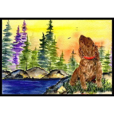 American Water Spaniel Doormat Mat Size: Rectangle 2 x 3