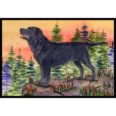 Labrador Doormat Rug Size: Rectangle 2 x 3