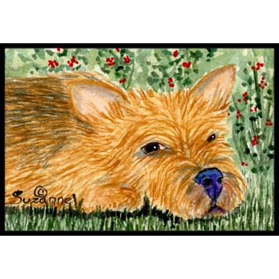 Norwich Terrier Doormat Rug Size: Rectangle 16 x 2 3