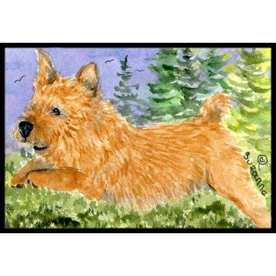 Norwich Terrier Doormat Rug Size: Rectangle 2 x 3