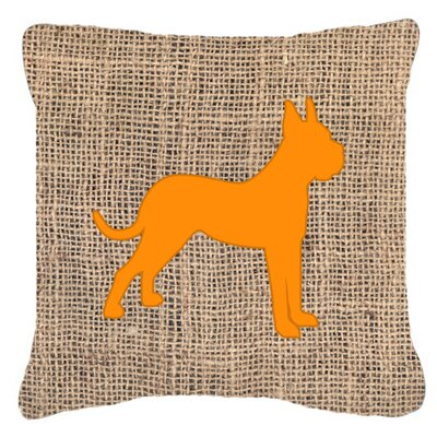 Boxer Burlap Indoor/Outdoor Throw Pillow Size: 18 H x 18 W x 5.5 D, Color: Orange
