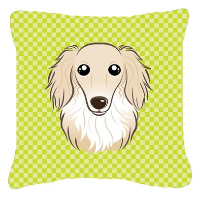 Checkerboard Longhair Creme Dachshund Indoor/Outdoor Throw Pillow Color: Green, Size: 14 H x 14 W x 4 D