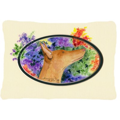 Pharaoh Hound Rectangular Indoor/Outdoor Throw Pillow