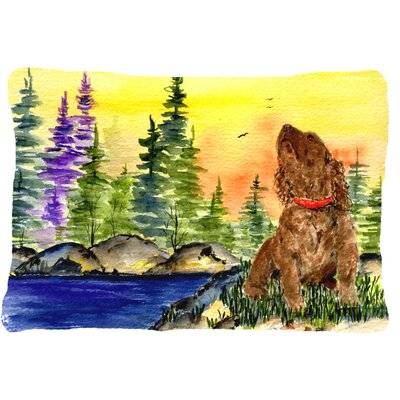 American Water Spaniel Indoor/Outdoor Throw Pillow