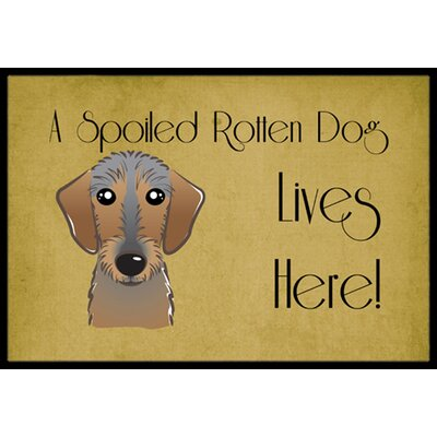 Wirehaired Dachshund Spoiled Dog Lives Here Doormat Rug Size: 16 x 23