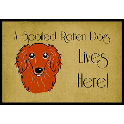 Longhair Dachshund Spoiled Dog Lives Here Doormat Rug Size: 2 x 3, Color: Red