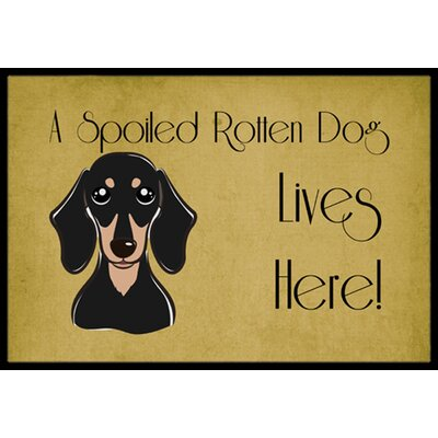 Smooth Black and Tan Dachshund Spoiled Dog Lives Here Doormat Rug Size: 2 x 3