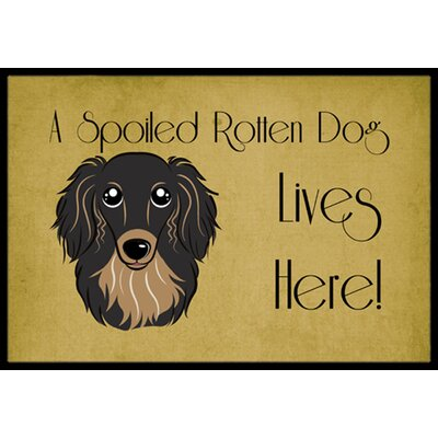 Longhair Dachshund Spoiled Dog Lives Here Doormat Rug Size: 16 x 23, Color: Black/Tan