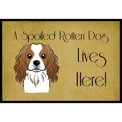 Cavalier Spaniel Spoiled Dog Lives Here Doormat Mat Size: 2 x 3