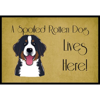 Bernese Mountain Dog Spoiled Dog Lives Here Doormat Rug Size: 16 x 23