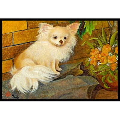 Chihuahua Just Basking Doormat Rug Size: 16 x 23