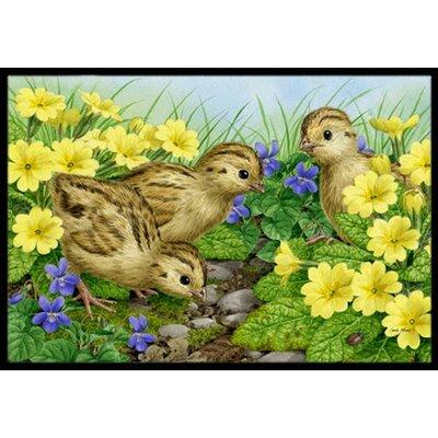 Pheasant Chicks Doormat Rug Size: 16 x 23