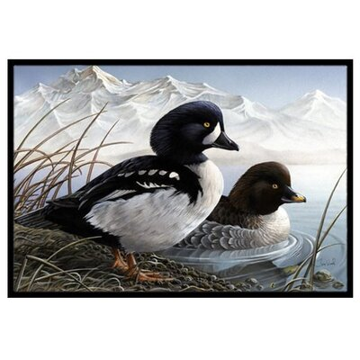 Goldeneye Ducks in the Water Doormat Mat Size: 2 x 3