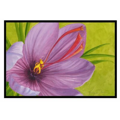 Floral Doormat Rug Size: 16 x 23
