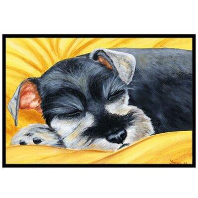 Snoozing Schnauzer Doormat Rug Size: 2 x 3