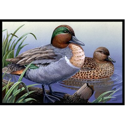 Green Teal Ducks in the Water Doormat Mat Size: 2 x 3