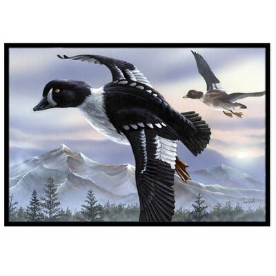 Goldeneye Ducks Flying Doormat Rug Size: 2 x 3