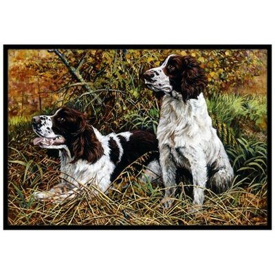 Two Springer Spaniels in the grasses Doormat Mat Size: 16 x 23
