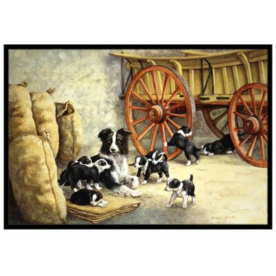 Border Collie Dog Litter Doormat Mat Size: 2 x 3