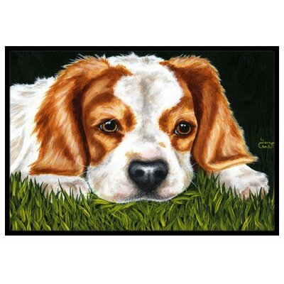 Cavalier Spaniel in the Grass Doormat Mat Size: 2 x 3