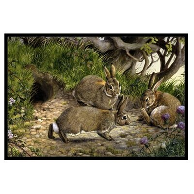 Rabbits and the Rabbit Hole Doormat Rug Size: 16 x 23