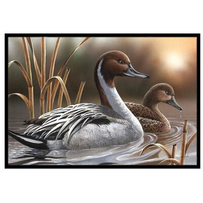 Pintails Doormat Rug Size: 2 x 3