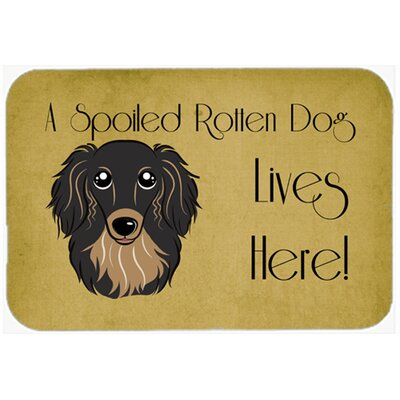 Longhair Dachshund Spoiled Dog Lives Here Kitchen/Bath Mat Size: 20 W x 30 L, Color: Black/ Tan