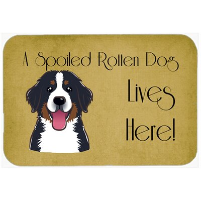 Bernese Mountain Dog Spoiled Dog Lives Here Kitchen/Bath Mat Size: 24 W x 36 L