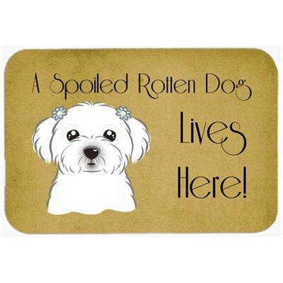 Maltese Spoiled Dog Lives Here Kitchen/Bath Mat Size: 24 W x 36 L