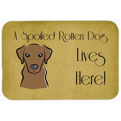 Labrador Spoiled Dog Lives Here Kitchen/Bath Mat Size: 24 W x 36 L, Color: Chocolate