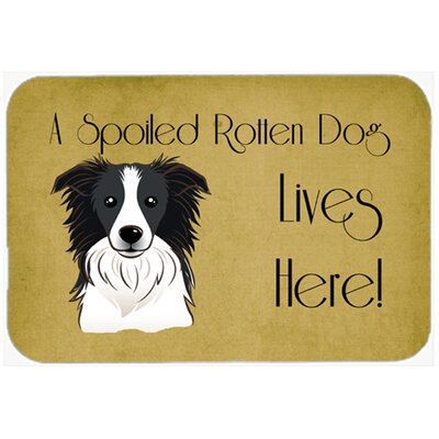 Border Collie Spoiled Dog Lives Here Kitchen/Bath Mat Size: 24 W x 36 L