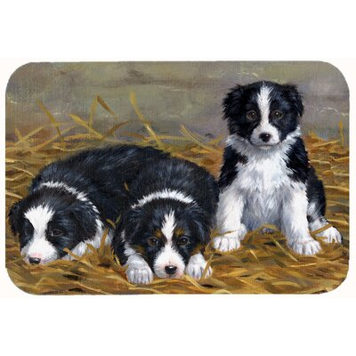 Border Collie Puppies Kitchen/Bath Mat Size: 24 W x 36 L