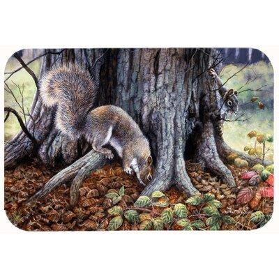 Squirrels Around the Tree Kitchen/Bath Mat Size: 24 W x 36 L