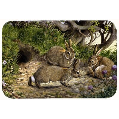 The Rabbit Hole Kitchen/Bath Mat Size: 24 W x 36 L