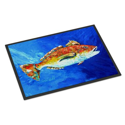 Fish Spin Doormat Rug Size: 2 x 3