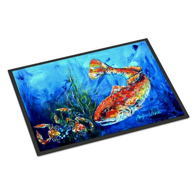 Scattefish Doormat Rug Size: Rectangle 16 x 23