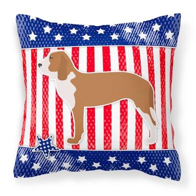 Patriotic Indoor/Outdoor Throw Pillow Size: 18 H x 18 W x 3 D